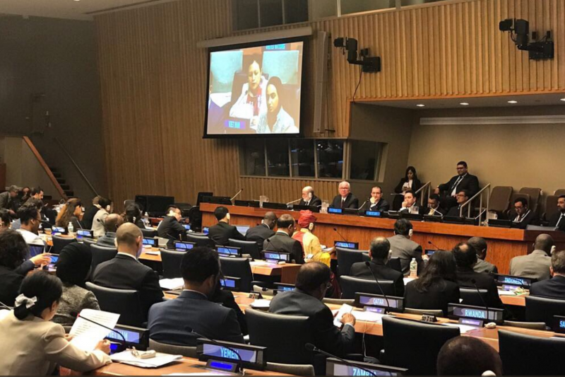 Member-states of the Non-Aligned Movement participate in Wednesday's meeting at the UN